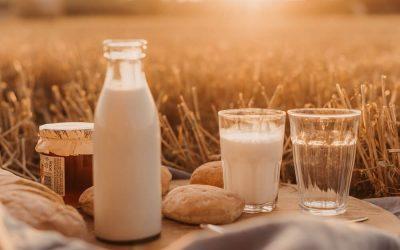 Sind Milchprodukte wichtig für eine gesunde Ernährung?